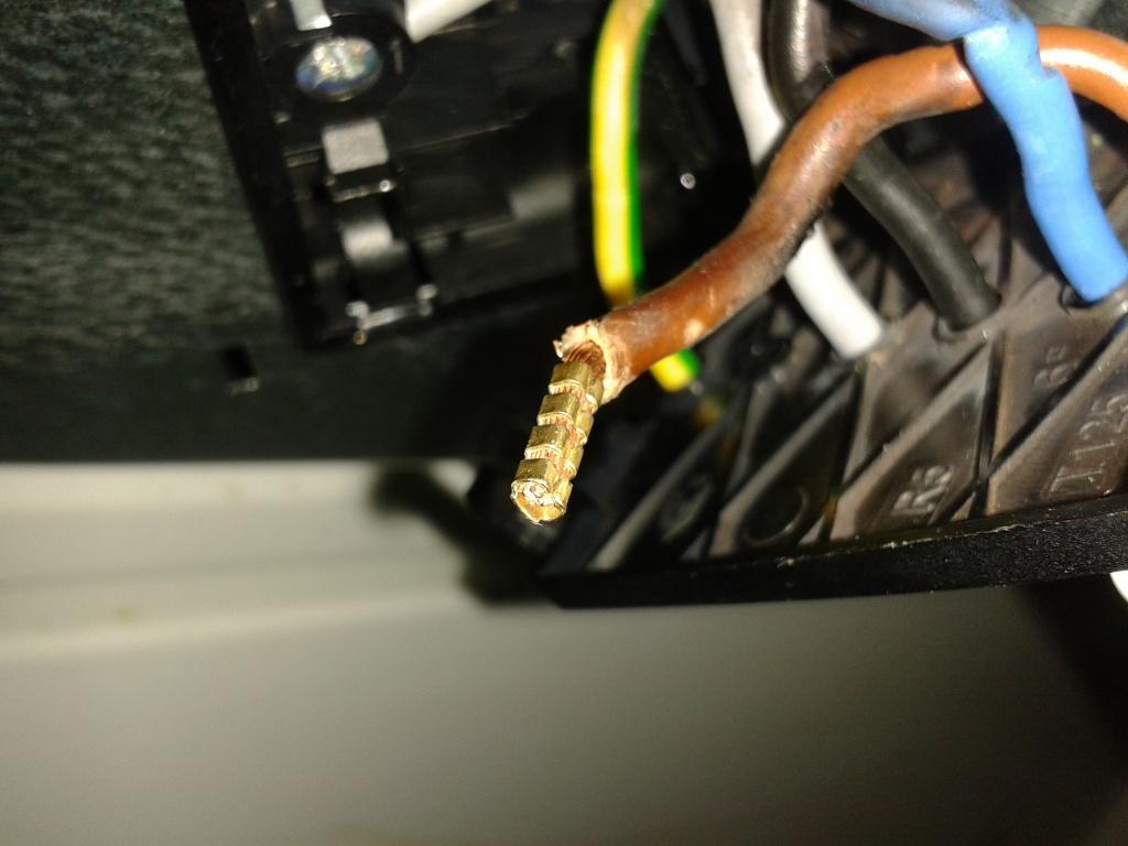 Elektroherd Kabelklemmen verschmort